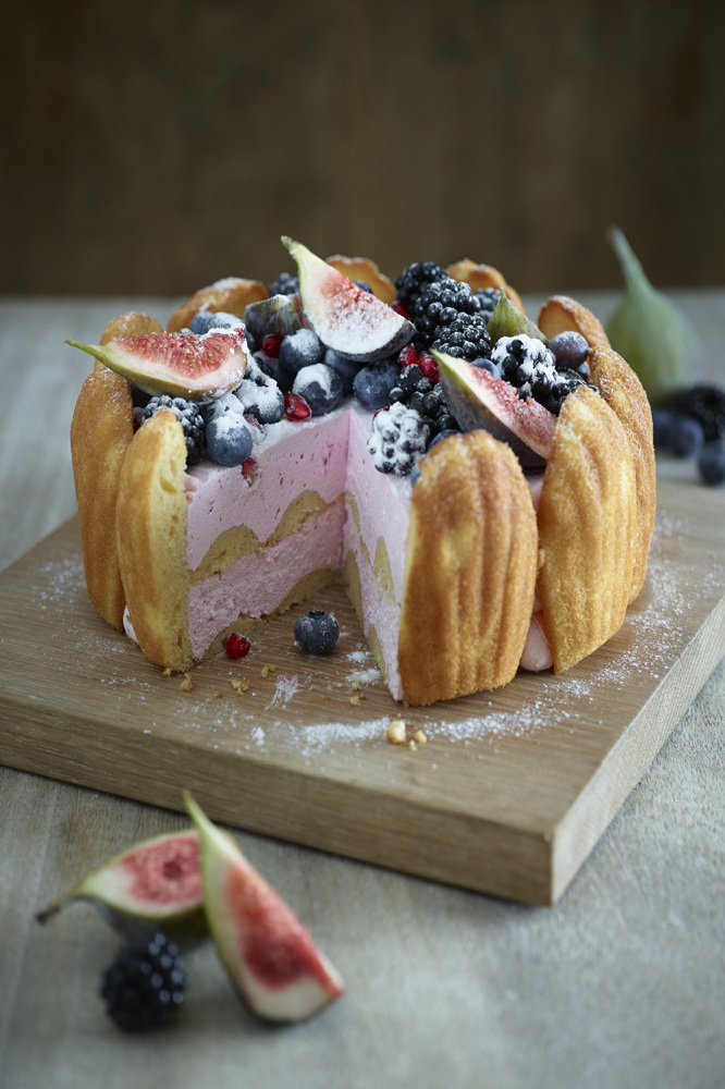 Winter Fruits And Madeleine Charlotte Cake