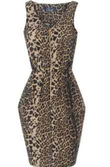 Leopard Dress on Perkins Is Going All Feisty With This Leopard Print Closet Zip Dress