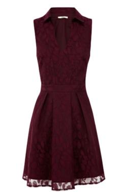 Oasis Gorgeous Autumn Dresses