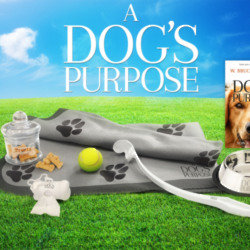 A Dog's Purpose Goodies
