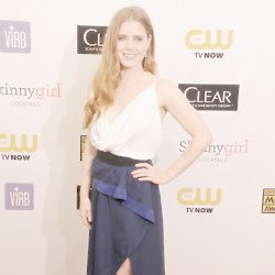 Amy Adams simple Vionnet gown was simply beautiful
