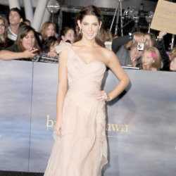 Ashley Greene and Donna Karan are a match made in fashion heaven
