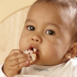 Best Snacks for Babies and Toddlers