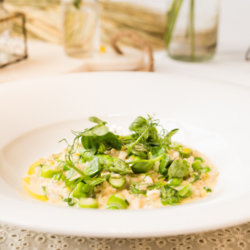 Budweiser Barley Summer Vegetable Risotto