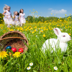 Will the Easter bunny be kind to you this year?