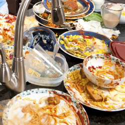 Wasting Food: Average British Family Bin a Third of a Ton Each Year