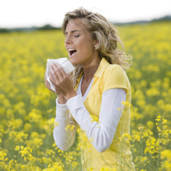 Enjoy the summer and don't worry about hayfever with these tips