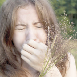 Top Tips To Battle Hayfever This Spring