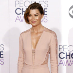 Ellen Pompeo has starred as Meredith Grey for 14 season of Grey's Anatomy to-date / Credit: Hubert Boesl/FAMOUS