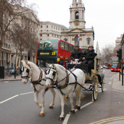 A private horse and carriage were organised