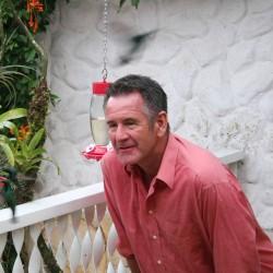 Wild Colombia Episode 1 - Hummingbird Clip