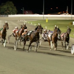 Harness Racing in Prince Edward Island