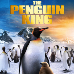The Penguin King 3D DVD