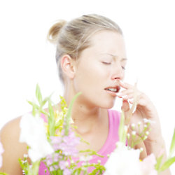 Don't let hayfever ruin your summer