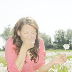 Hay Fever Sufferers Get Less Sex