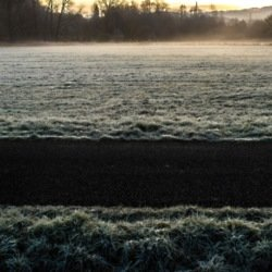 We find out what it means to dream about frost