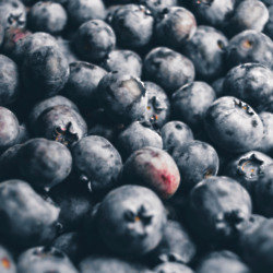 Blueberries are low in FODMAPS
