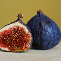 Figs have a wealth of benefits