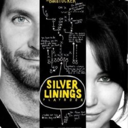 Silver Linings Playboo