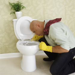 How often do you clean your toilet?