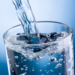 Do you drink the recommended amount of water each day?
