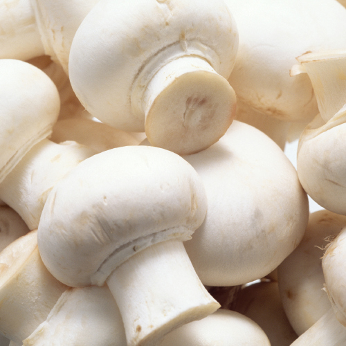 Will you be eating more mushrooms